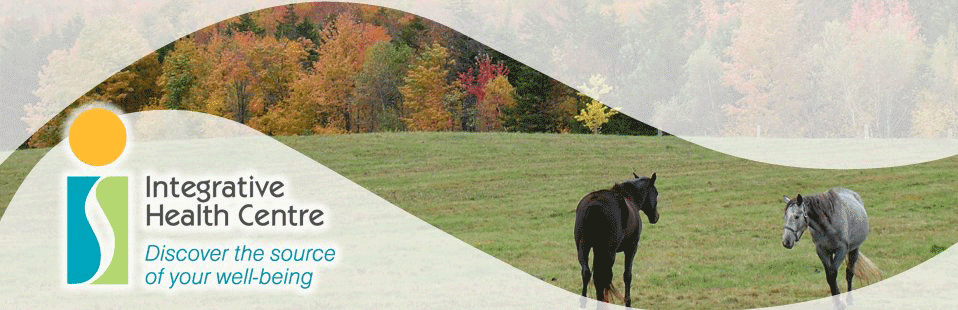 ihcmontreal_fall_horses